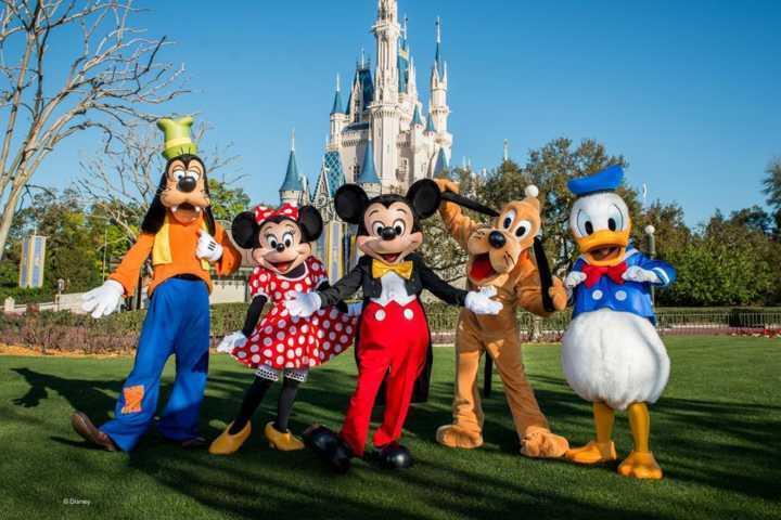 Os selecionados serão responsáveis por tirar dúvidas sobre os parques da Disney