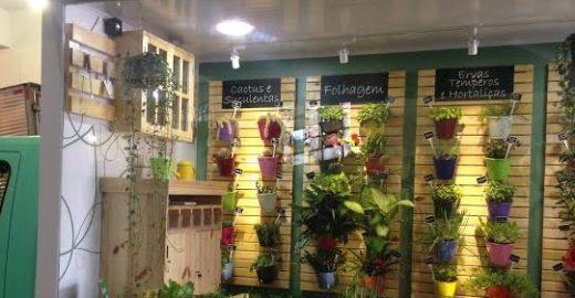 """""""Plant Truck"""" ensina como cultivar sua própria horta em SP"""