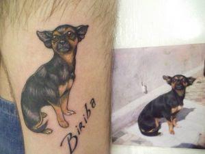 Fotos de tatuagens Animal