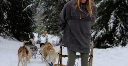 Que tal cuidar de huskies que puxam trenó em troca de hospedagem?