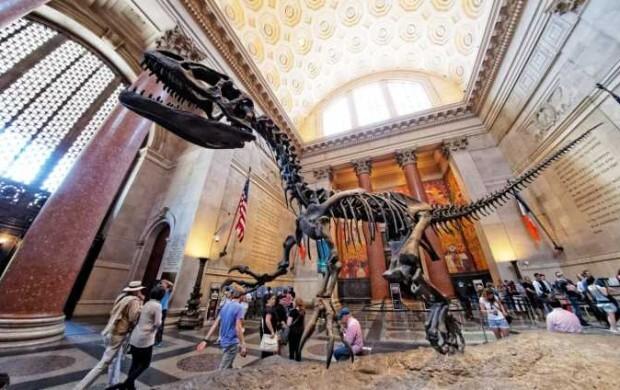NY-American-Museum-of-Natural-History-001