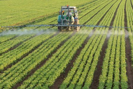 farming tractor spraying a field of spinach