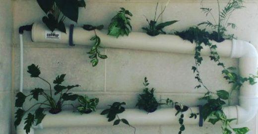 Faça você mesmo: 9 ideias de jardim suspenso