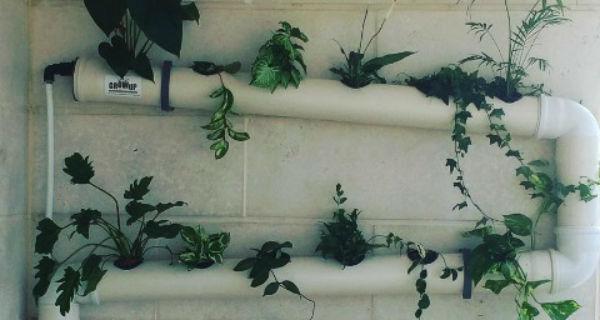 Faça você mesmo 9 ideias de jardim suspenso