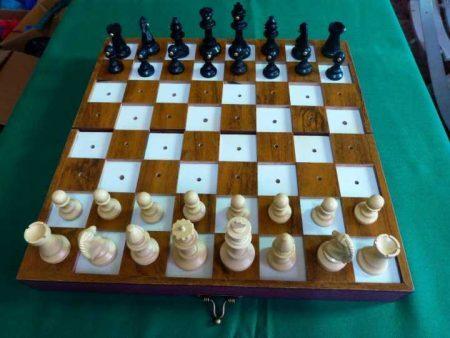 Biblioteca oferece aulas gratuitas de xadrez para deficientes visuais