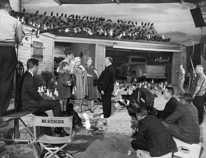 """O diretor Alfred Hitchcock conversando com o elenco de """"Os Pássaros"""" (1963)"""