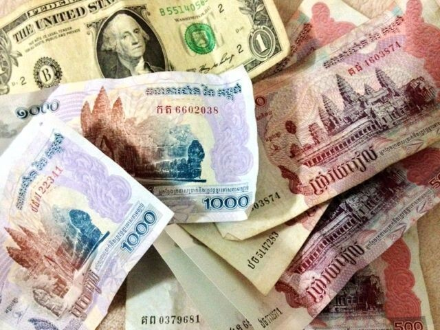 camboja-dinheiro