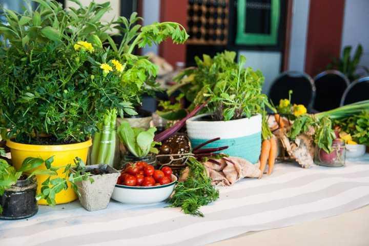 O objetivo do movimento é combater o desperdício de alimentos