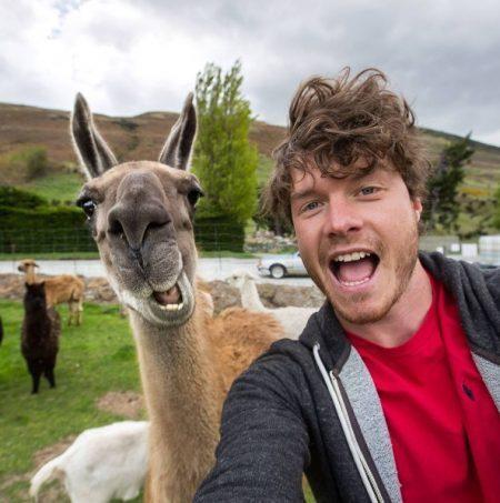 Selfie com animais