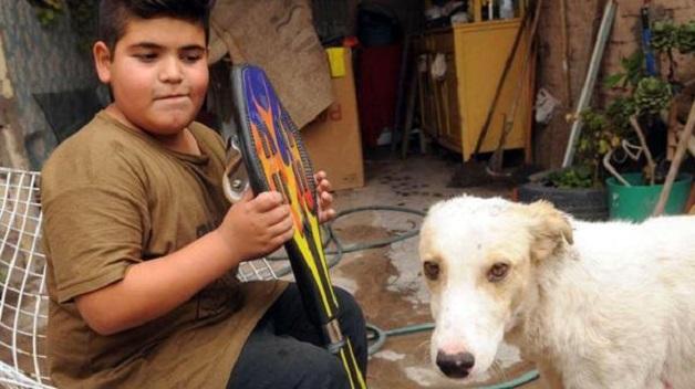 Garoto argentino vende skate para pagar tratamento de cão de rua