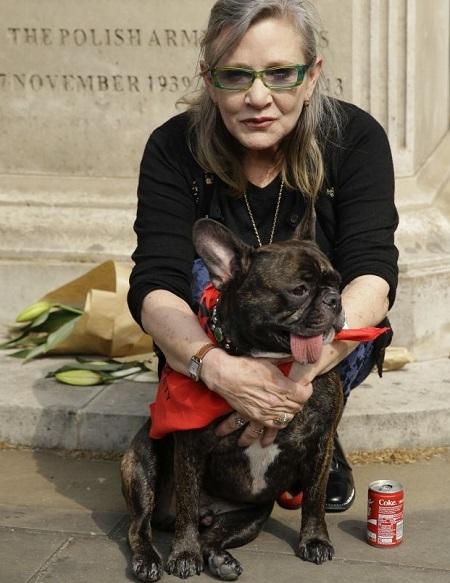A atriz protestou em frente ao consulado chinês ao lado de seu cão Garry | Foto: Divulgação / QZ