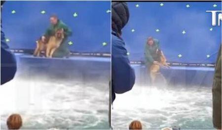 """Vídeo, divulgado semanas antes do lançamento de """"Quatro Vidas de um Cachorro"""", mostrava cão jogado na água à força"""