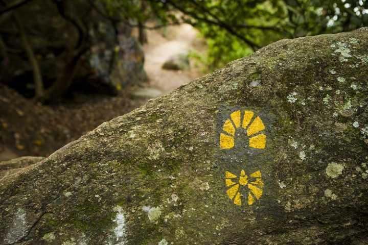 Pegadas amarelas sinalizam o caminho