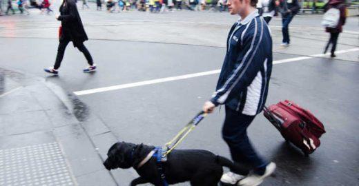 Deficientes visuais têm dificuldade de usar Uber com cão-guia