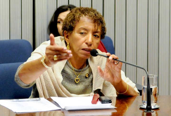 A deputada Leci Brandão em sessão de CPI na Assembleia