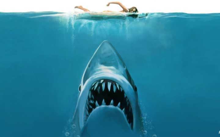 'Drive-in' coloca público para ver 'Tubarão' de forma assustadora