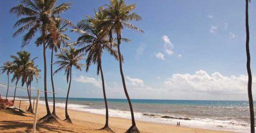 Nordeste: 5 motivos para conhecer a <mark class='searchwp-highlight'>Bahia</mark>