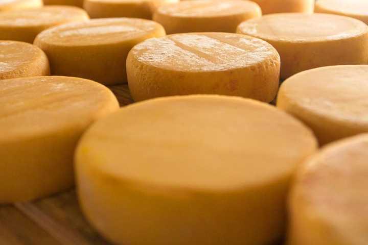 Os famosos queijos da Serra da Canastra