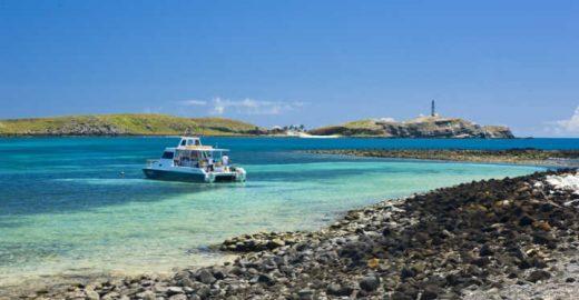 Saiba como é viajar em um liveaboard em Abrolhos, na <mark class='searchwp-highlight'>Bahia</mark>