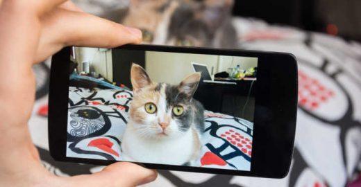 Seja o mestre do Google Fotos com essas dicas incríveis!