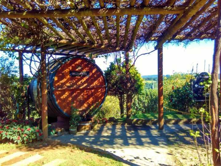 São Roque e a Rota do Vinho. Vinícola Bella Aurora
