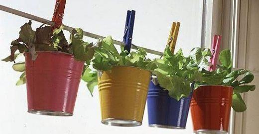 11 criativos e simples jardins vertificais