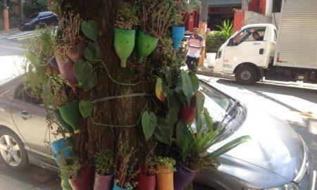 ReciproCidade apoia o projeto Flores no Cimento