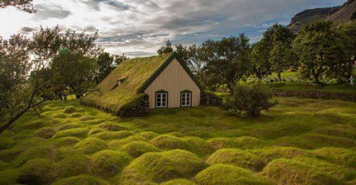 Telhados verdes: beleza com eficiência energética