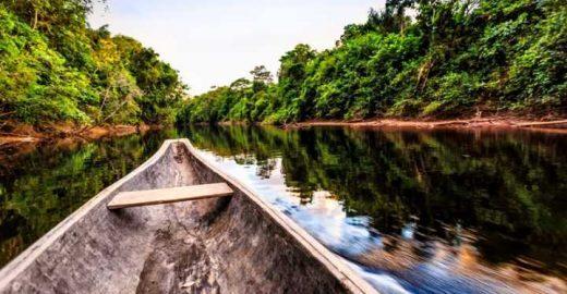 Vídeo: 7 curiosidade para você virar um expert em Amazônia