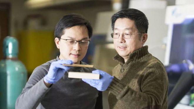 Pesquisadores seguram um pedaço de madeira comum, mais espessa, e a madeira tratada, que é mais fina