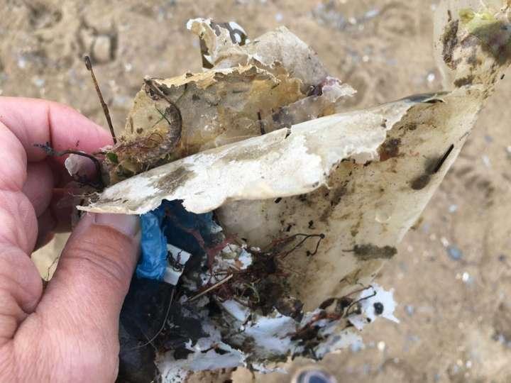 Pedaços de plástico e lixo encontrados na praia de Aberporth, em Gales