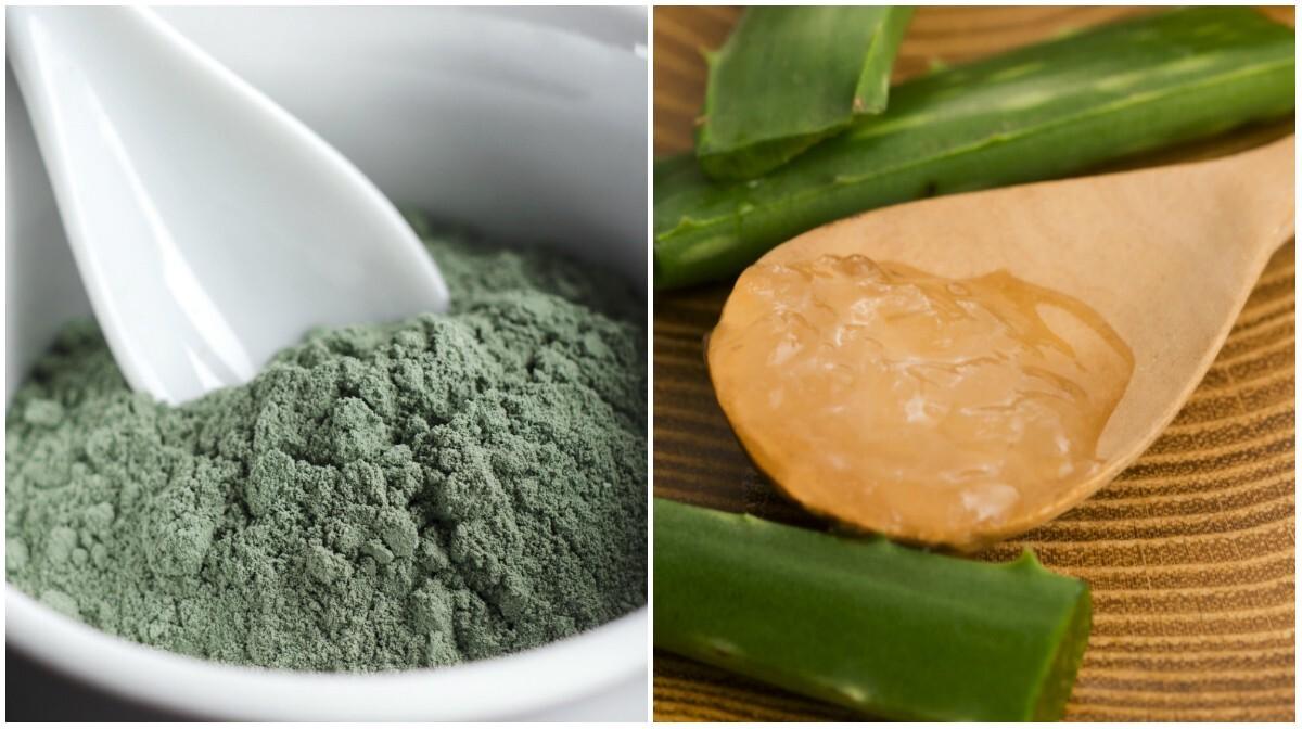 Argila verde e aloe vera (babosa)