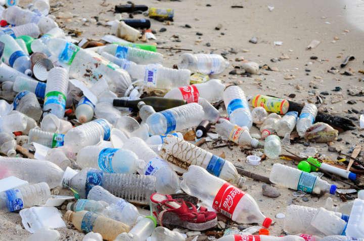 A enzima que come plástico foi descoberta por um acaso da ciência