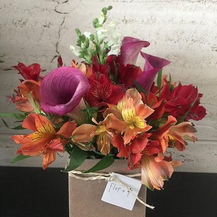 A Flor+1 é uma das floriculturas que encampam iniciativas sustentáveis no segmento