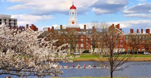 Catraca Livre vira estudo de caso para estudantes de Harvard