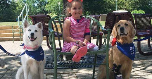 Cães de 3 patas ajudam menina que perdeu perna a andar novamente