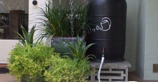 Minicurso ensina a montar sistema de captação de água da chuva