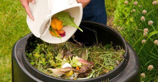 4 passos para fazer adubo com lixo orgânico em casa