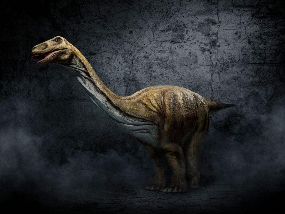 Dinos Experience