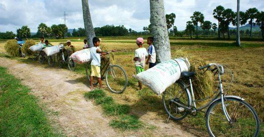 Empresas e OIT se reúnem para combater o trabalho infantil