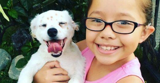 Menina ensina língua dos sinais para seu cãozinho <mark class='searchwp-highlight'>surdo</mark>