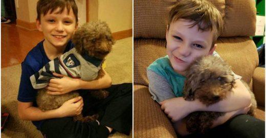 Melhores amigos: garotinho adota cão idoso e dá a ele um novo lar