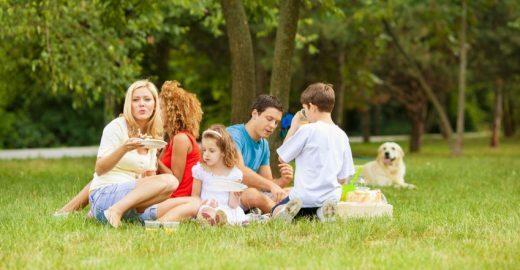 Passeio no parque para se reaproximar dos amigos e família