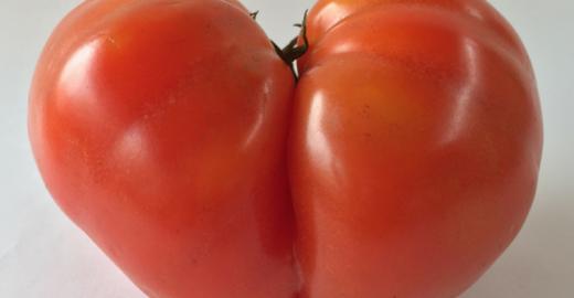 """Empresa entrega frutas e verduras """"imperfeitas"""" por preços mais baixos"""