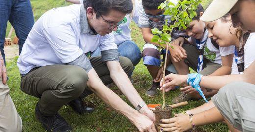 Jovem lidera projeto para plantar 1 trilhão de árvores em 30 anos