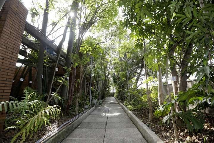Jardim suspenso do Edifício Matarazzo