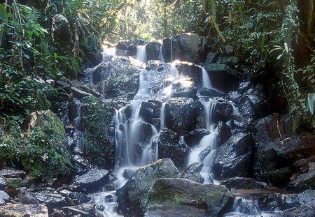 Parque da Cantareira – Núcleo Cabuçu