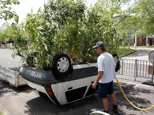Da série carros transformados, um vaso de plantas