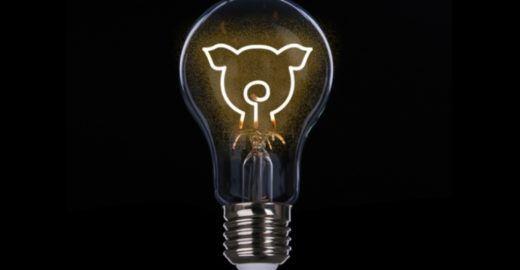 Energia vegana é produzida com vento e luz solar