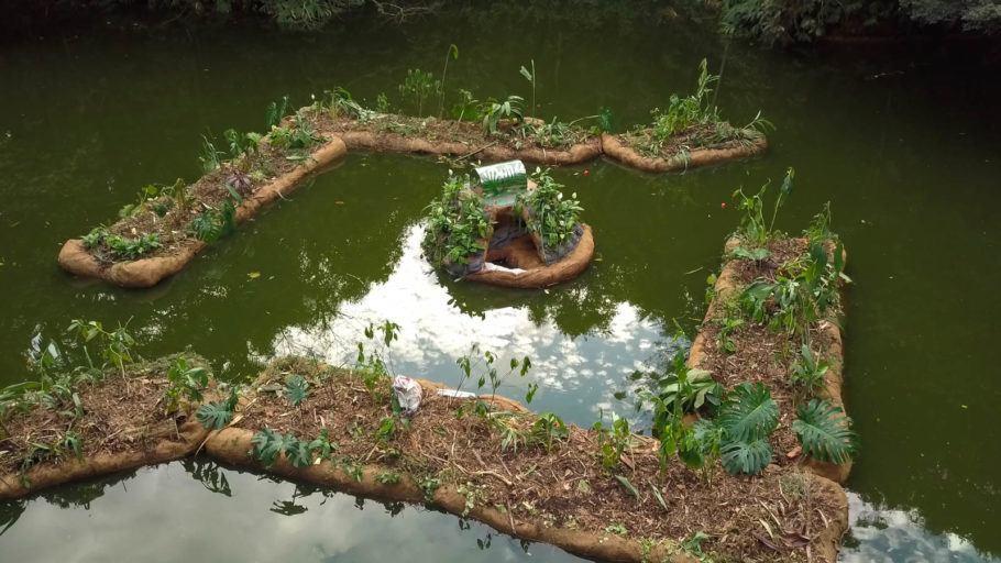 Os jardins suspensos promovem a purificação da água e o reequilíbrio do ecossistema